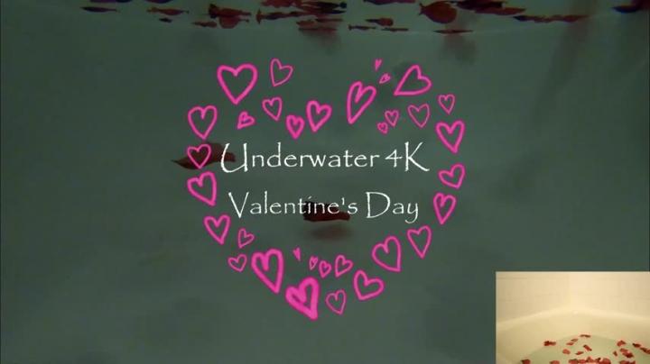 [4K Ultra HD] misskittymoon underwater 4k valentines ft bad dragon - MissKittyMoon - Amateur | Bad Dragon, Underwater Fetish, Pov - 2,5 GB